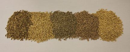 Different types of wood pellets